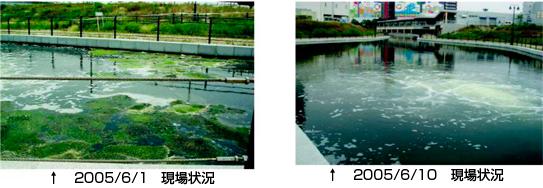 2005/1-10 現場状況
