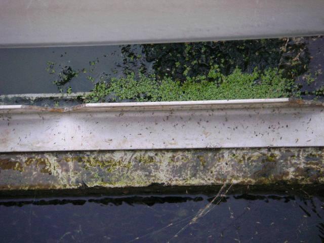 大手エレクトロニクス関連工場|沈殿槽の藻対策・水質改善 施工事例